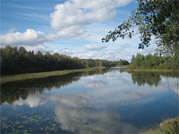 paisatge
